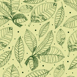 咖啡徒手画的叶子模式 免版税图库摄影