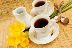 咖啡早晨春天 免版税库存照片