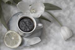 咖啡时间 库存图片