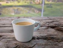 咖啡木表面上的在庭院池塘附近 库存照片