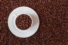 咖啡杯充满coffe豆 库存图片