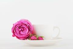 咖啡杯大模型和在白色书桌上的玫瑰色花有文本的干净的空间的和设计您blogging 库存图片