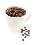 咖啡杯嫩豆 库存图片