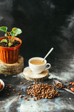 咖啡杯特写镜头用在黑背景的烤咖啡豆 接近的咖啡杯 杯coffe 可口coffe c 免版税库存图片