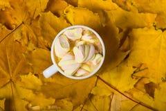 咖啡杯用在黄色叶子地毯的蛋白软糖  免版税库存图片