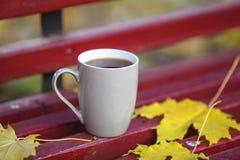 咖啡杯的特写镜头图象在五颜六色的槭树的在木b离开 图库摄影