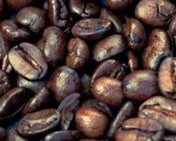 咖啡杯豆 免版税库存图片