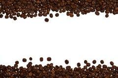 咖啡框架种子 库存图片