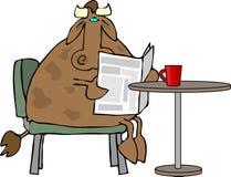 咖啡母牛 免版税图库摄影