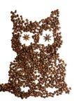 咖啡猫头鹰 库存图片
