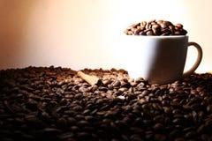 咖啡用在棕色颜色的桂香 免版税库存照片
