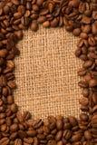 咖啡用茴香 免版税图库摄影