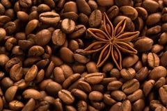咖啡用茴香 库存图片