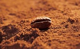 咖啡粉末用豆, 库存图片