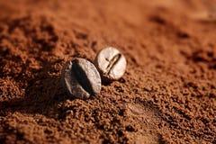 咖啡粉末用豆 图库摄影
