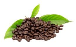 咖啡粒和叶子 免版税图库摄影