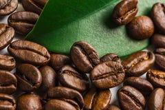 咖啡粒和叶子 库存图片