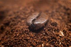 咖啡粒特写镜头 库存照片