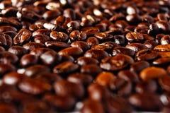 咖啡粒 库存图片