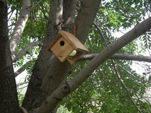 咖啡罐子鸟房子 免版税库存照片