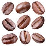 咖啡豆。 免版税库存图片
