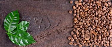 咖啡豆和咖啡植物绿色叶子在一张老木书桌上的 咖啡豆顶视图与拷贝空间的您的文本的 免版税图库摄影