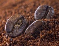 咖啡豆和地面特写镜头  库存照片