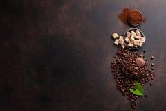 咖啡豆和地面粉末 免版税库存照片