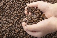 咖啡豆在有爱心脏的手上在咖啡背景 E 图库摄影