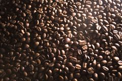 咖啡豆特写镜头芬芳油煎的五谷  免版税库存图片