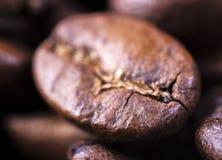 咖啡豆特写镜头与焦点在一个,宏指令的 库存图片