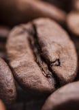 咖啡豆特写镜头与焦点在一个,宏指令的 免版税图库摄影