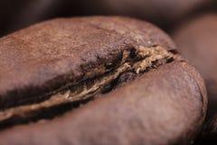 咖啡豆特写镜头与焦点在一个,宏指令的 库存照片