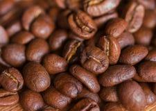 咖啡豆特写镜头 库存图片