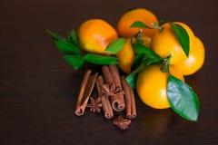 咖啡豆用在老木板的香料 桂香,坚果,八角 免版税库存图片