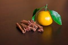 咖啡豆用在老木板的香料 桂香,坚果,八角 免版税库存照片