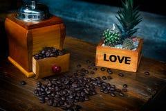 咖啡豆研磨机用溢出的咖啡豆和2个仙人掌o 图库摄影