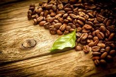 咖啡豆背景在土气漂流木头的 免版税库存照片