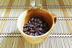 咖啡豆观看 库存照片