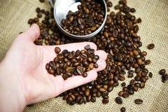 咖啡豆选择 库存图片