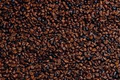 咖啡豆静物画  免版税库存图片