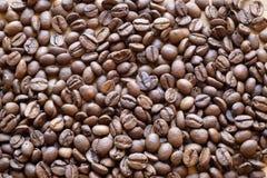 咖啡豆风景上面 免版税库存图片