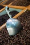 咖啡豆-烤咖啡背景 免版税图库摄影