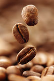 咖啡豆 免版税库存照片