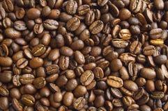 咖啡豆02 库存照片