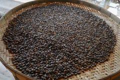 咖啡豆prodution 免版税库存图片