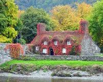 咖啡馆,河沿,在秋天 免版税图库摄影