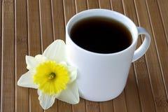 咖啡黄水仙花杯子 库存图片