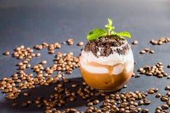 咖啡Bunsai杯子和豆在黑背景 免版税库存图片