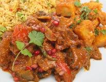咖喱印地安人膳食 库存照片